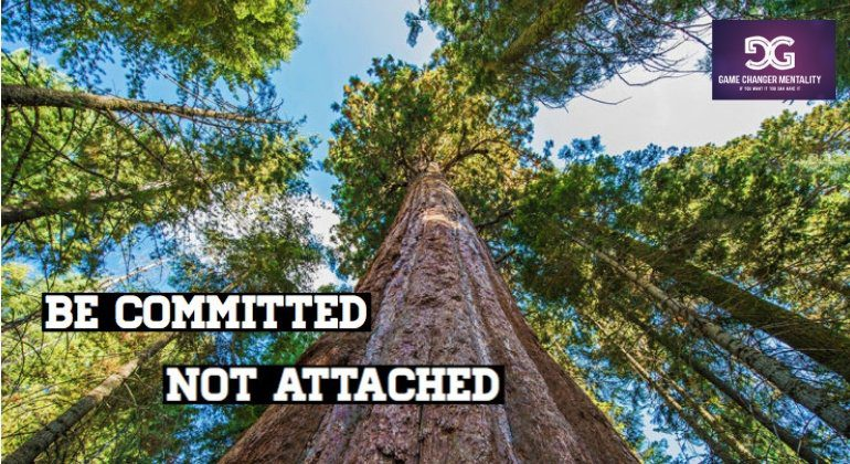 Be Committed but not Attached to your Game-Changing Vision