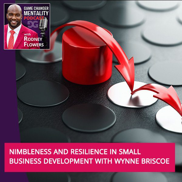 Nimbleness And Resilience In Small Business Development With Wynne Briscoe